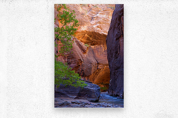 The Narrows  Metal print