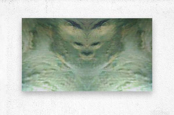1548132183050  Metal print
