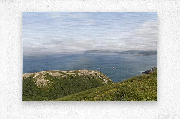 Vista from Signal Hill  Metal print