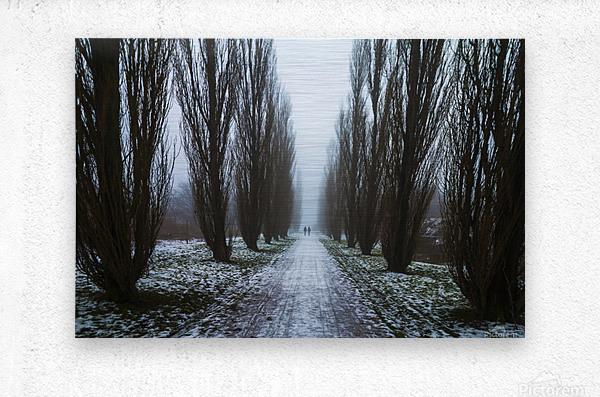 Symetric walk path in fog  Metal print