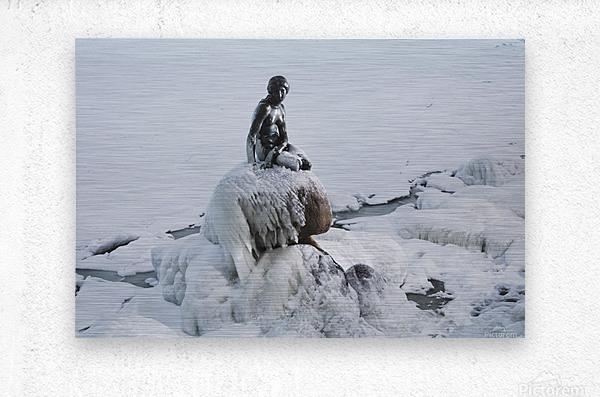 Frozen canal near statue of The Little Mermaid   Metal print