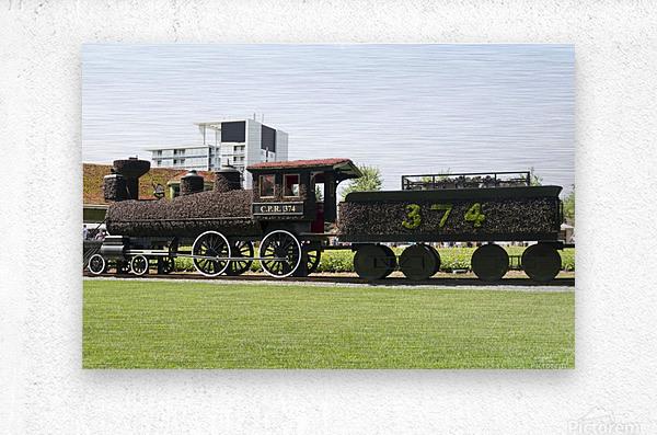 CPR train 374  Metal print