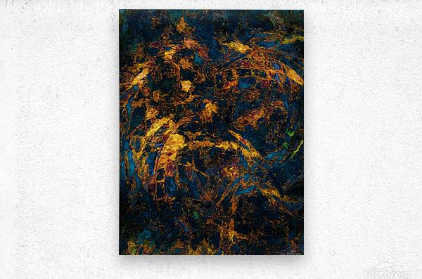 Chasm  Metal print