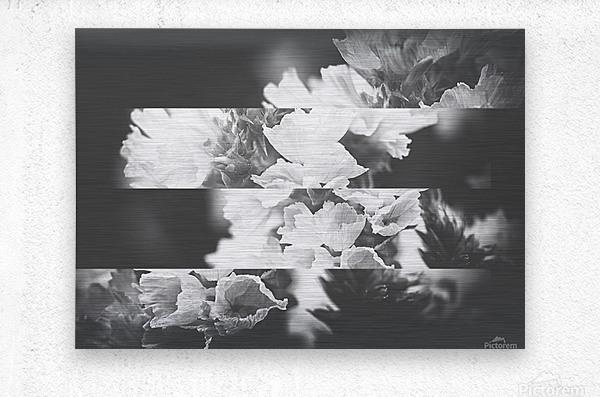 Flower Bells Collage BnW  Metal print