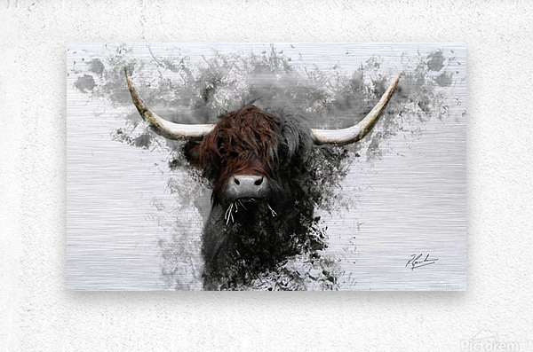 Highland Cow in Ink  Impression metal