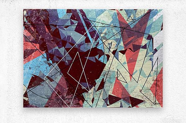 SAK29  Metal print