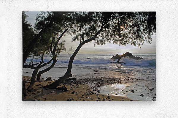 Wild Hawaii Beach  Metal print