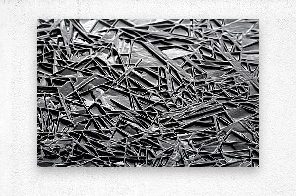 Natural Geometry Black And White  Metal print