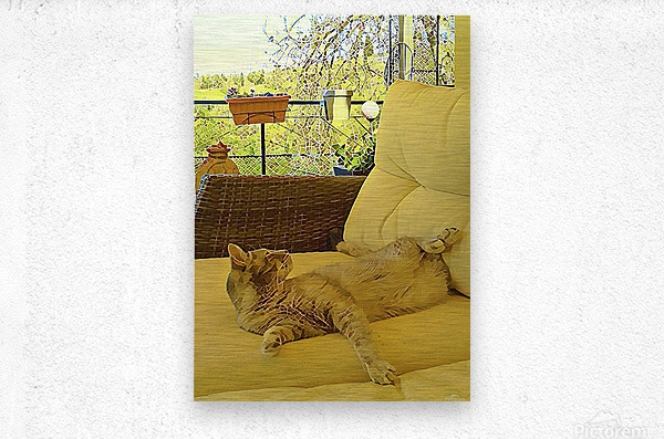 Lounging Around  Metal print
