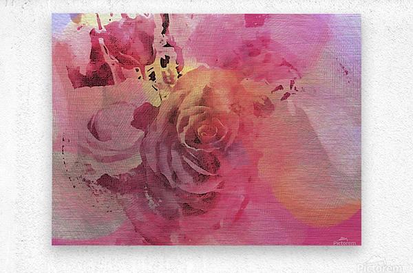 June Rose  Metal print