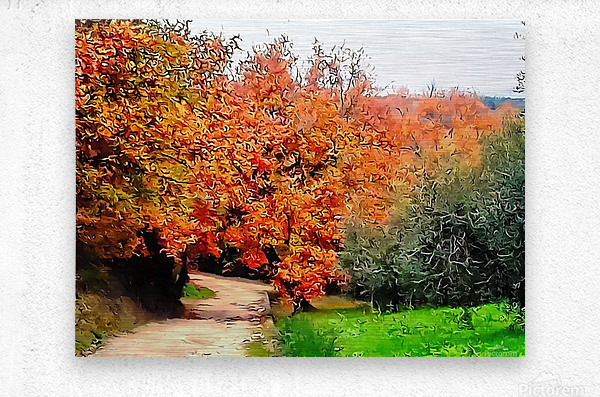 Autumn Golden Colours Umbria  Metal print