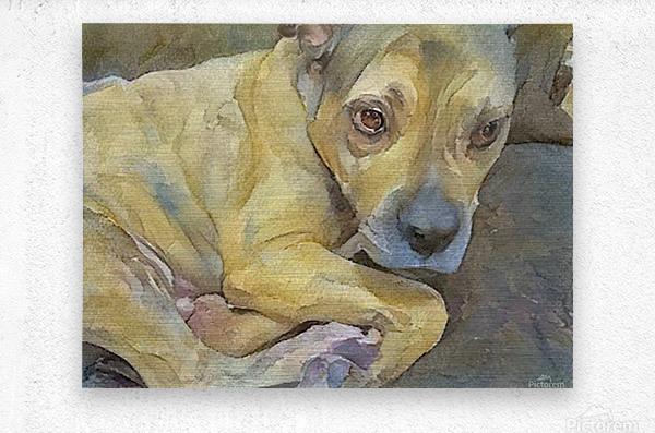 Watercolor dog painting  Metal print