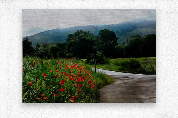 The Poppy Road to Happiness  Metal print