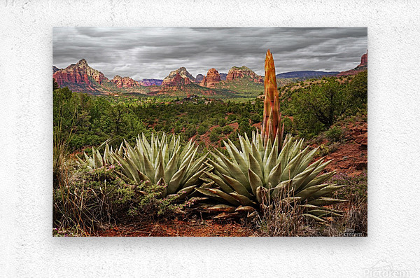 Storm over Sedona  Metal print