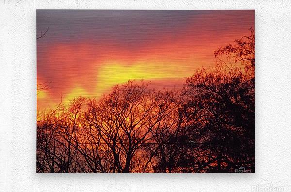Sunset 1  Metal print