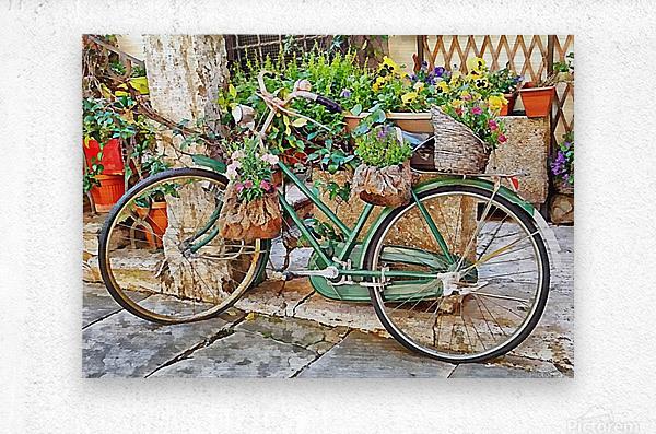 Decorative Bicycle In Cortona  Metal print