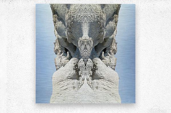The White Monk  Metal print