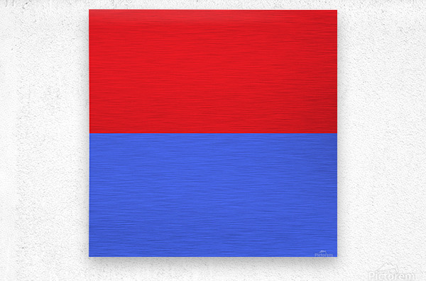This is a beautiful design with great color, shape, line, texture, space and value.  (24)  Metal print