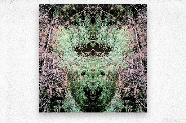 The Child of Green  Metal print