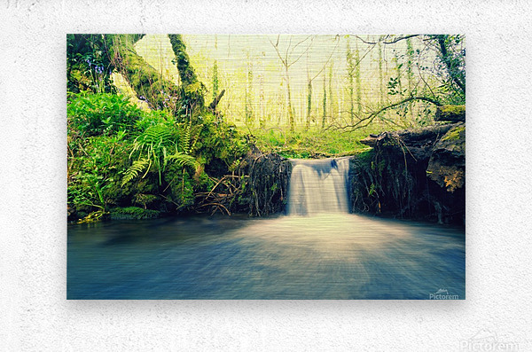 waterfall river nature forest   Metal print