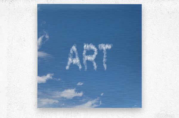 Artist Sky  Metal print