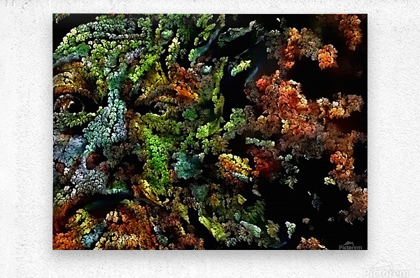 The Face of Nature  Metal print