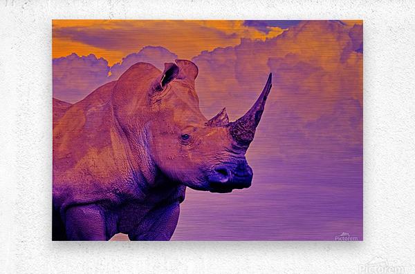 White Rhino orange purple  Metal print