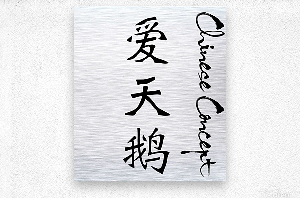 Chinese Concept 22A  Metal print