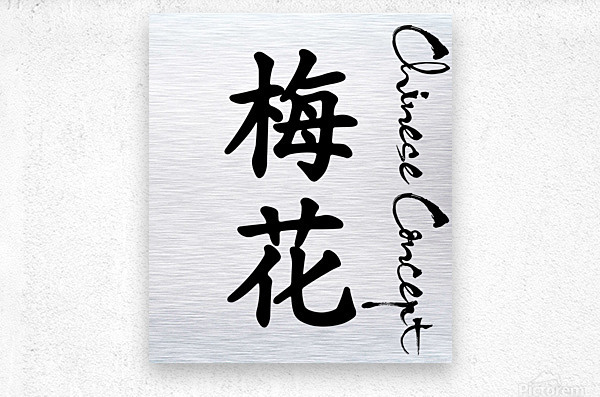 Chinese Concept 26A  Metal print