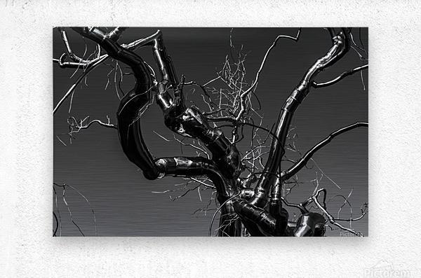 Metal tree  Metal print
