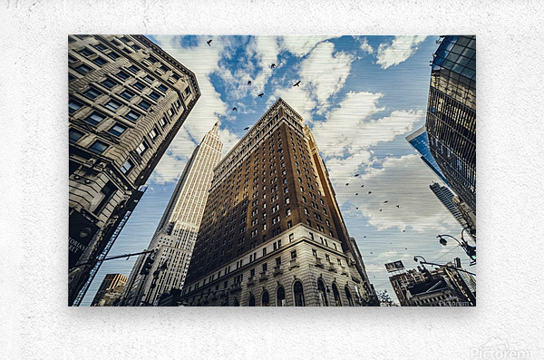 New York Sky  Metal print