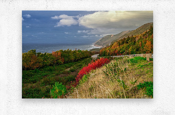 Cabot Trail Colors  Metal print