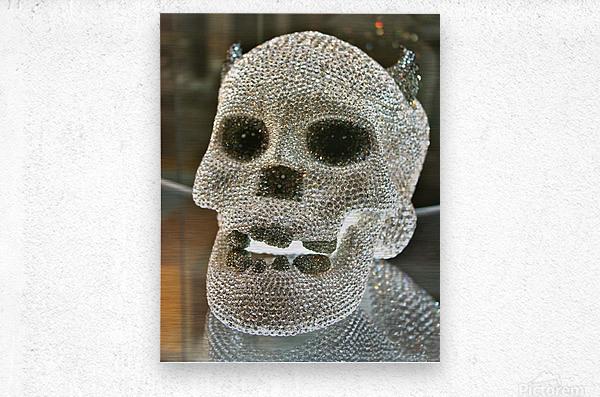Paris Crystal Skull  Metal print