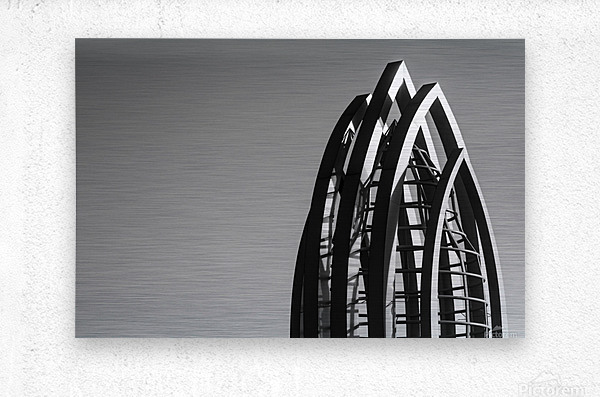 IMG_7617  Metal print