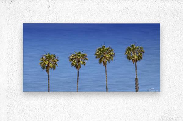 Lovely Palm Trees   Panorama  Metal print