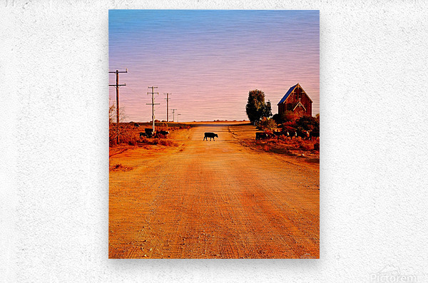 Quirky Sights of the Outback 1  Metal print