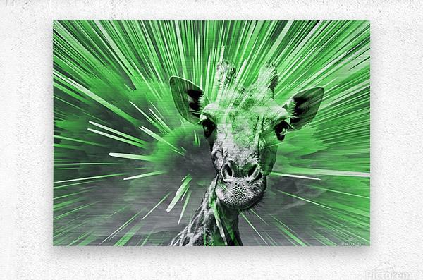 Giraffe pop 4    Metal print
