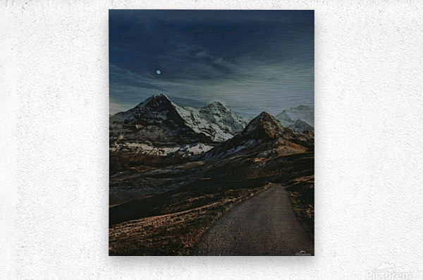 The Long Road Traveled  Metal print