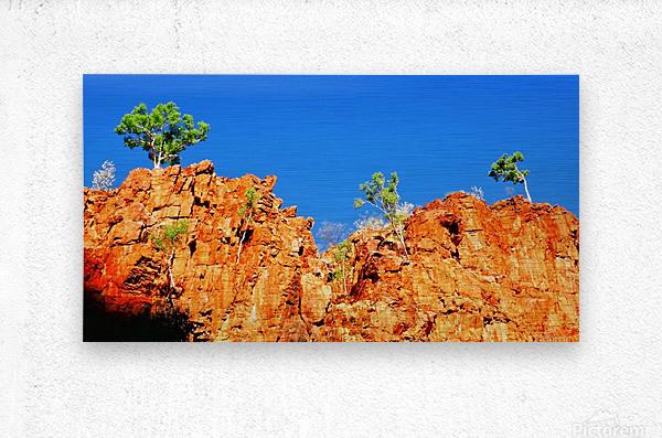 Skyline - Ormiston Gorge  Metal print