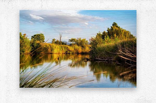 Serene River  Metal print