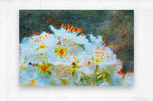 Blossom In A Storm  Metal print