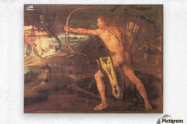 Hercules and the Stymphalian Birds  Metal print