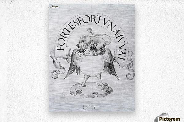 Fortes fortuna Ivvat  Metal print