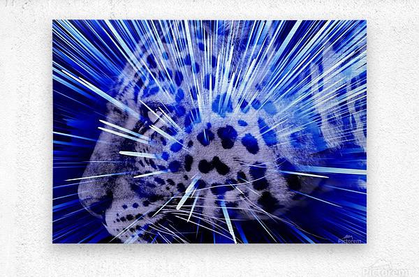 Leopard pop 4   Metal print