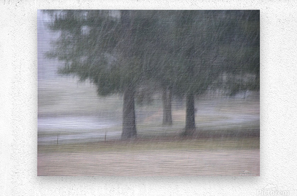 Soft Snow Fall Photograph  Metal print