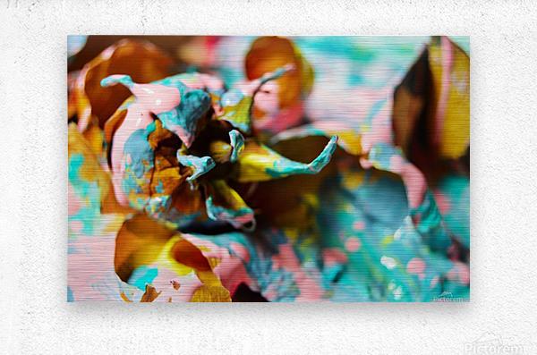 Painted Roses.10  Metal print