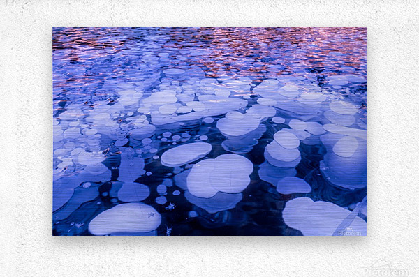 Abraham Lake Bubbles  Metal print