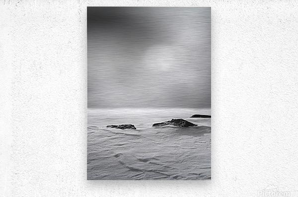 The Silence  Metal print