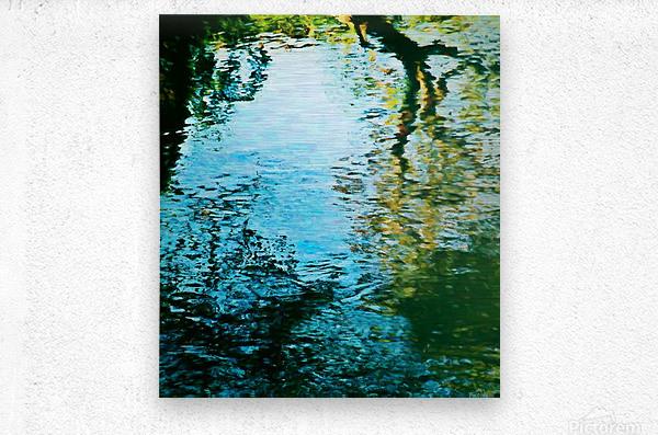 Nature reflections  Metal print