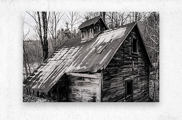 Abandoned Shack 6  Metal print